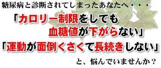 藤代1.JPG